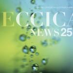 jeccicanews25